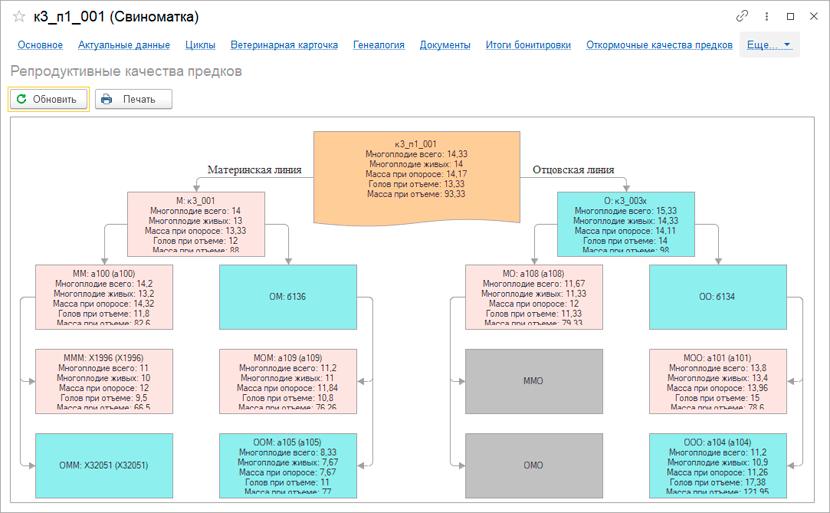 Репродуктивные качества в 1С Селекция в животноводстве Свиноводство